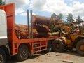 troncos de madera de caoba