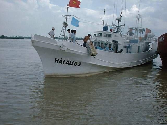 Tuna Longliner Vessel for Sale