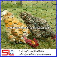 woven animal protection hexagonal mesh ,mesh fence used in animal breed ,kickens raise woven mesh .