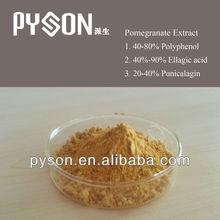 Best price Polyphenols Pomegranate Extract powder