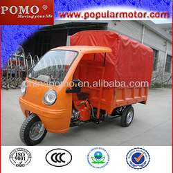 Gasoline Powerful Pedal Cargo Tricycle