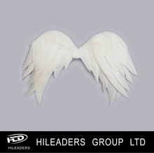 Mini Children Feather Wings DS808