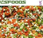 IQF Frozen mixed vegetables/hawaiian mix,european mix,mexican mix etc.