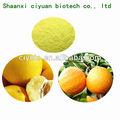 98% cáscara de mandarina hesperidina extracto
