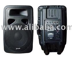 sell cabinet speakers (YG SERIES )