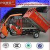 2013 New Popular Hot Cargo 250cc Trike Chopper