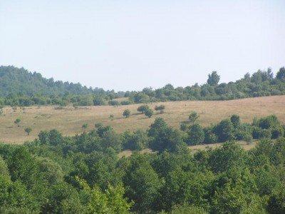 Lote de terra, Sugau, Sighet, Maramures, 488838 m². Para venda