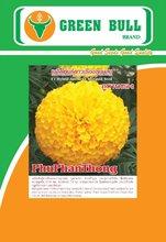 "hat giong hoa van tho ""PhuPhanThong"" Green Bull Seed"
