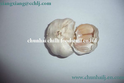 supplier A grade dried garlic