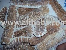 Seca de color blanco pepino de mar