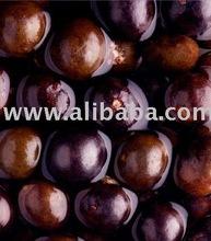 acai brazilian fruit