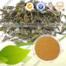 Natural Java tea Extract 40% Polyphenols