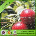 usado em pomares para proteger as frutas contra as aves quadrados de malha de aves de compensação