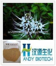 High Quality Java Tea Powder Extract 4:1