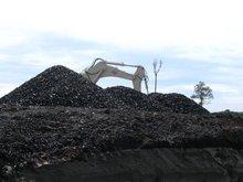 Coal, Steam Coal, Thermal Coal