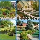 Gardening / Landscaping