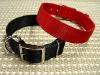 Nylon dog collar