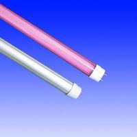 tube 8 led light beauty sex tube