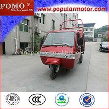 Hot Sale Popular Petrol Cargo 3 Wheel Motorcycle Price