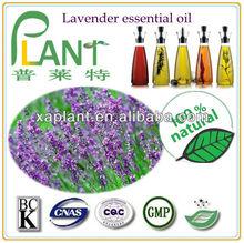 Organic lavender essential fragrance oil