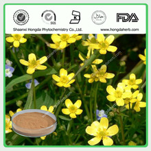 Cats claw Extract /Ranunculus ternatus thunb