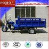2013 Model Hot Popular Cargo New 250cc Road Warrior Trike