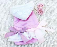 Princess Winter dog Skirt Pet clothing