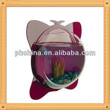 An-c560 European Design Factory Hot Sell Clear Aquarium Supplies/Mini Aquarium/Wall Hanging Aquarium