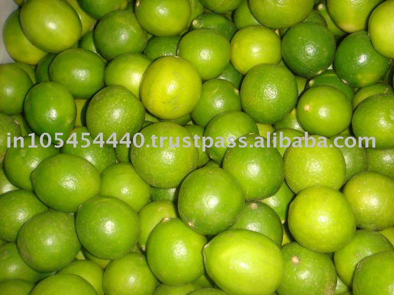 Fresh indian lemon