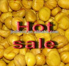 nuovo raccolto congelato pelati kernel castagna