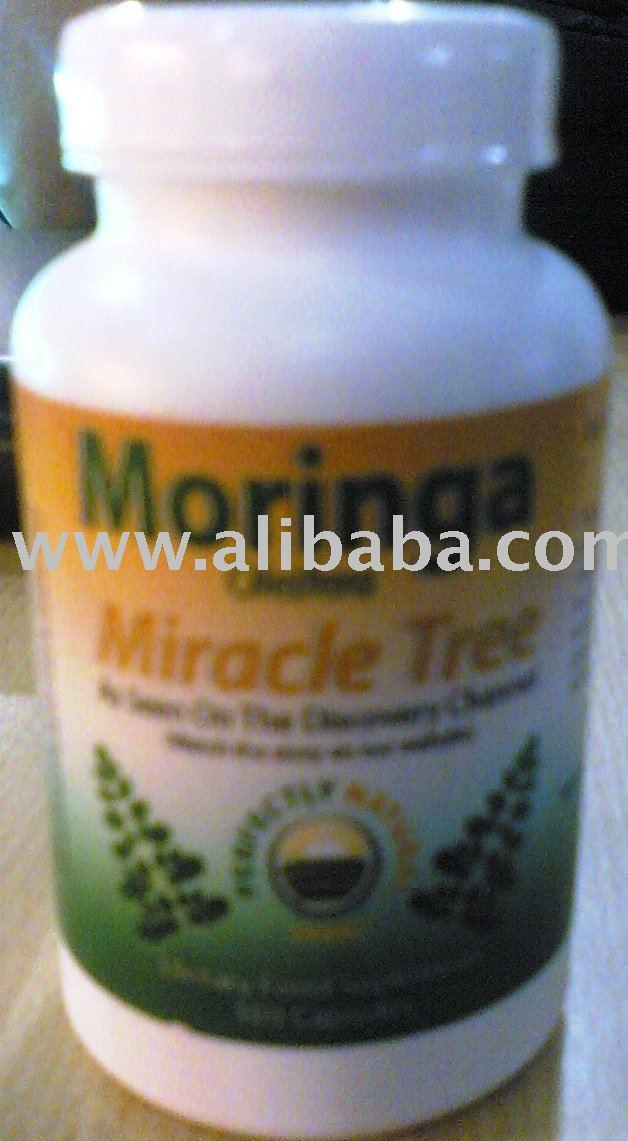 Moringa OLIEFERA - o milagre da árvore