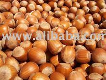Organic Hazelnut