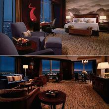 Single extensive hotel bedroom sofa hotel furniture (EMT-SKB354)