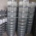 Cerca de grama exporter+manufacture