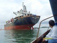 Cargo Bulk Carrier