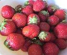 Strawberry Raspberry Banana Smoothie