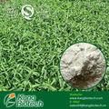Orgánica extracto de stevia/100% edulcorante natural/polvo de stevia pura
