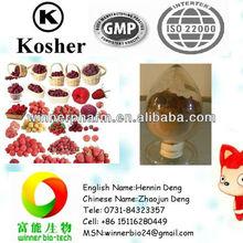 Natural Fructus Rubi P.E./Raspberry P.E.