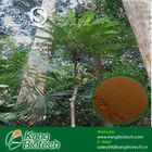 100:1 Tongkat Ali Extracts, Herbal Supplements