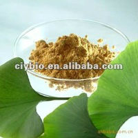 USP31 100%natural plant extract Ginkgo Biloba Extract Flavonoids Powder HPLCFlavonoids Powder HPLC
