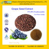 Natural Antioxidant Product Grape Seed P.E. with 98%