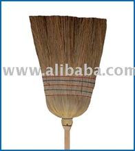 broom sorghum