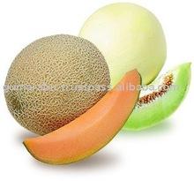 Melon Sudan
