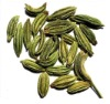 Fennel Seed Oil IP/BP/USP