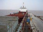 BULK CARRIER/DRY CARGO SHIP