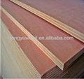 Peuplier ou eucalyptus haute densité contreplaqué de plantes professionnels avec le meilleur prix