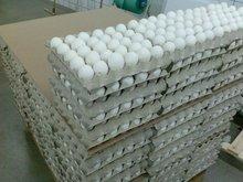 los huevos frescos