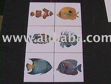 Tropical Fish set of six
