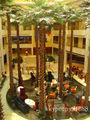 la imitación de alta artificial palma grande de interior de las plantas