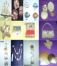 Sea Shell Handicrafts